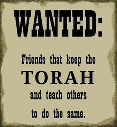 WANTED: Torahkeepers that teach!  Seriously, so hard to find real keepers.