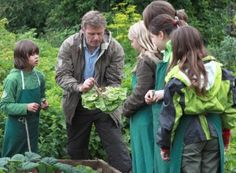 Saving Childhood: Basic Schools and the Future of Waldorf Education | Waldorf Today - Waldorf Employment, Teaching Jobs, Positions & Vacancies in Waldorf Schools