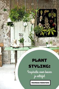 Al eens aan gedacht om planten boven je eettafel te hangen? Handig als je plek te kort komt! En dat staat toch supertof zo'n plantenhemel boven je tafel! Outdoor Furniture Sets, Outdoor Decor, Plants, Home Decor, Decoration Home, Room Decor, Plant, Home Interior Design, Planets