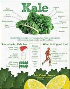 Kale is a great thing to have growing in your veggie garden!