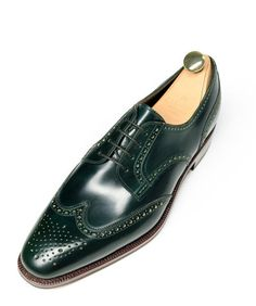Carmina model number 080254-001, size 9.5. Green shell cordovan wingtip derby. With shoe trees and shipping comes to $700.