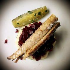 Filety z makreli w oliwie Manná, na puree z ziemniaków i burakach z kminkiem.    Mackerel fillets in olive oil with potatoes puree and backed beetroots.