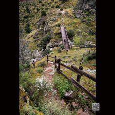 "Fotografia do dia - 01/09/2016 (Photo of The Day) ""Path to Liberation"""