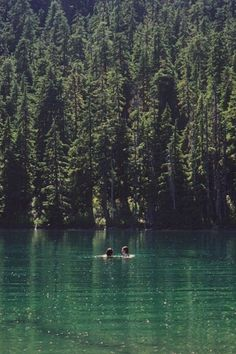 Swimming in a lake/dam, being in nature. Vie Simple, Seen, Swimming Holes, Adventure Is Out There, Plein Air, The Great Outdoors, Summer Vibes, Summer Sunset, Summer Nights