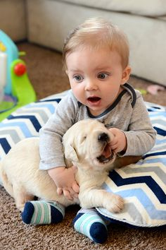 Baby with golden retriever puppy.