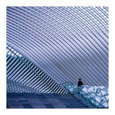 This is also Liege Santiago Calatrava, Love Photography, Interior Architecture, Monochrome, Skyscraper, Photos, Louvre, Europe, Black And White