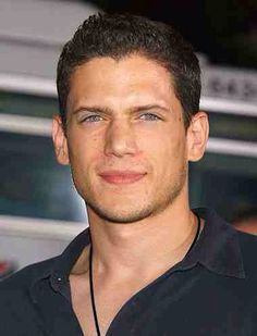 Wentworth Miller may be gay - more power to him for coming out - but he's still hot and good eye candy.