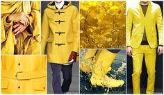 Top Color, Menswear Market, F/W 2015-16, SLICKER YELLOW (Escape Brights)