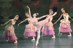 Love NYCB's Dew Drop and Flower costumes