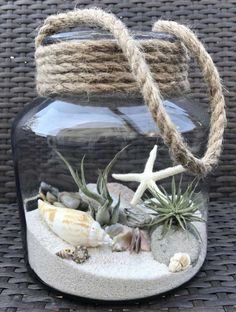 Luft Pflanzen DIY Ideen In Best Plants DIY Ideas And Inspiration For You The post Beste 70 + Air Plants DIY Ideen und Inspiration für Sie appeared first on Home Dekoration. Seashell Crafts, Beach Crafts, Diy And Crafts, Seashell Projects, Seashell Art, Crafts With Seashells, Seashell Wind Chimes, Beach Themed Crafts, Kids Crafts