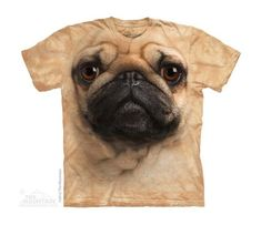 PUG FACE - C #pug FACE - CH