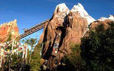 Every Single Ride at Walt Disney World, Ranked