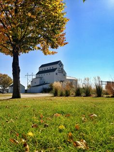 #Fall in #Fargo Moorhead!