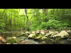 Baxters Hollow Creek - YouTube