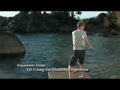 Qi Gong for Healthy Digestion with Lee Holden Exercise Routines, Excercise, Learn Tai Chi, Tai Chi For Beginners, Morning Exercises, Coaching, Eastern Medicine, Arthritis Exercises, Chinese Martial Arts