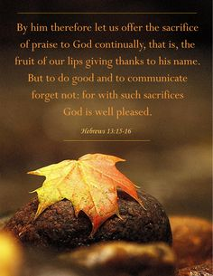 By him therefore let us offer the sacrifice of praise to God continually, that is, the fruit of our lips giving thanks to his name. But to do good and to communicate forget not: for with such sacrifices God is well pleased. Hebrews 13:15-16