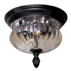 """Newport 11 5/8"""" Wide Indoor - Outdoor Ceiling Light Fixture $105.91"""