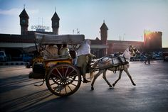 Lahore, Pakistan by Steve McCurry Steve Mccurry, Street Photography, Nature Photography, Equine Photography, Film Photography, Landscape Photography, Fashion Photography, Wedding Photography, Grand Trunk Road