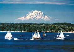 School Contract Occupational Therapist/OT Job Hiring NOW – Olympia, WA - pinned by @PediaStaff – Please Visit  ht.ly/63sNt for all our pediatric therapy pins