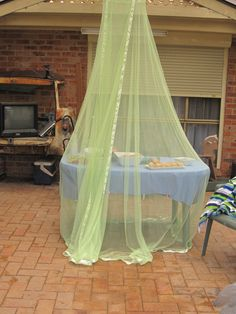 I used a bedroom mosquito net hung from a rafter to protect the food at my daughter's pool party.
