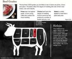 Tailgate food : selecting beef - page 6 of 8 - sirloin has 4 basic cuts - sirloin steak , tri-tip steak ( culotte ) , tri-tip roast , and ball-tip roast.