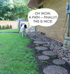 63 Best Dogscaping Images Dog Backyard Gardens Dog Friendly Backyard
