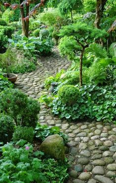 garden path of stones