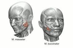 Долой обвисшие щеки. 4 способа омоложения