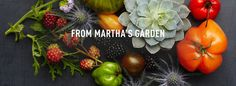 Watch Martha Stewart's From Martha's Garden Videos. Get more step-by-step instructions and how to's from Martha Stewart.