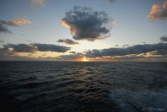 Sunset at Sea in the Gulf of Mexico.  Cruise Photo of the Day - June 29, 2012.  More cruise ship photos at CruiseCrazies.com.  #cruise #cruising #cruiseship #cruisevacation #cruisecrazies