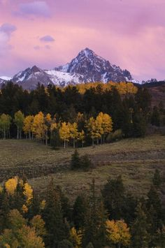 Colorado Ranch - meadows, forest, mountain peaks. What a view!