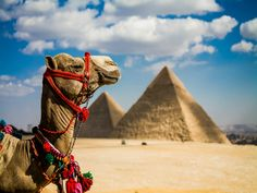 """Képtalálat a következőre: """"egyiptom"""""""