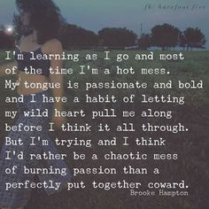This is one of the most profound quotes I've ever read! I love my chaotic mess full of burning passion - don't let anyone dull your shine! Great Quotes, Quotes To Live By, Me Quotes, Motivational Quotes, Inspirational Quotes, Hot Mess Quotes, Wild Child Quotes, Drake Quotes, Profound Quotes