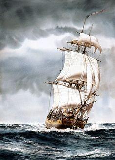 "SAILING SHIP ART IMAGES | COLUMBIA"" - Watercolor, in Sailing Ship Paintings"