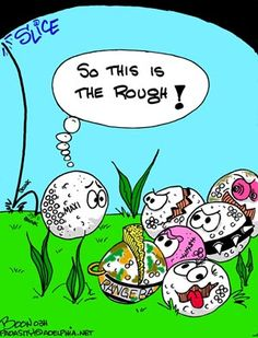 Ever wonder what happens to those balls you hit off into the rough...