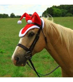 Shires Horse Holiday Hat Small