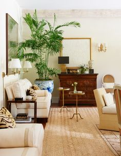 Bringing palms, fiddle leafs and indoor trees inside your interiors, softens and adds instant beauty into your home.