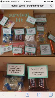 Job Survival Kit Survival Kit Gifts New Job Survival