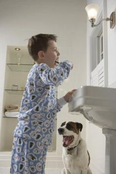 How to Make Your Own Dog Toothpaste(-bc even poochy shouldn't exist on chemicals)