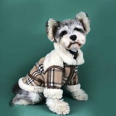 puberry Dog Advanced Jacket   Super Warm-w100# - 2XL