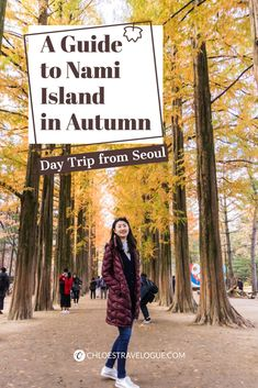 [Autumn in Korea] Hop on the best day trip from Seoul with this detailed guide of Nami Island and the Garden of Morning Calm to enjoy the stunning autumn foliage! Cool Places To Visit, Places To Travel, Travel Destinations, South Korea Travel, Asia Travel, Winter Travel, Holiday Travel, Nami Island Autumn, Autumn In Korea