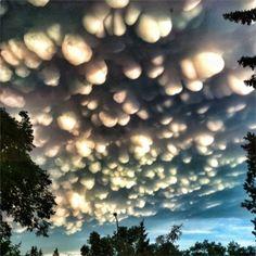 Mammatus - WolkenSoorten