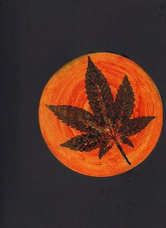Cannabis Halloween - 2013