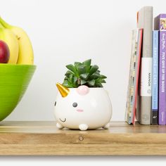 Our Elodie the Unicorn Planter is now £11.89 (30% off)!