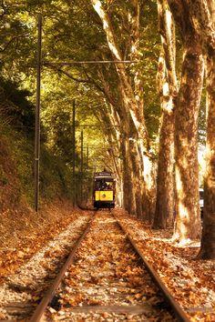 Train love!