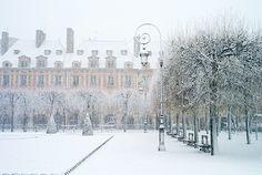 Paris en hiver  •  Carla Coulson