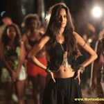 Upcoming movie 'The Shaukeens' has released the latest 'Manali Trance' song on YouTube today. This song is featuring Lisa Haydon, Manali Trance song has been sung by Honey Singh and Neha Kakkar, Lisa Haydon is looking stunning in her sexy black dress and...