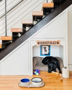 Awesome Dog Ideas For The Home – Pickled Barrel Built-in Dog-Bed Under Stairs Under Stairs Dog House, Space Under Stairs, Under The Stairs, Built In Dog Bed, Dog Nook, Dog Bedroom, Pallet Dog Beds, Dog Spaces, Diy Dog Bed