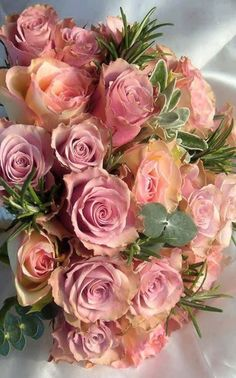 Beautiful Roses by Ana Rosa. Romantic Roses, Beautiful Roses, Romantic Cottage, Rosas Color Salmon, My Flower, Pretty Flowers, Pink Roses, Pink Flowers, Tea Roses