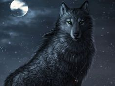 I got: Wolf! Which Animal would Most Likely be your Fantasy Companion?